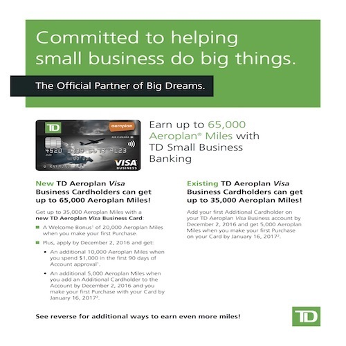 Td business plan writer